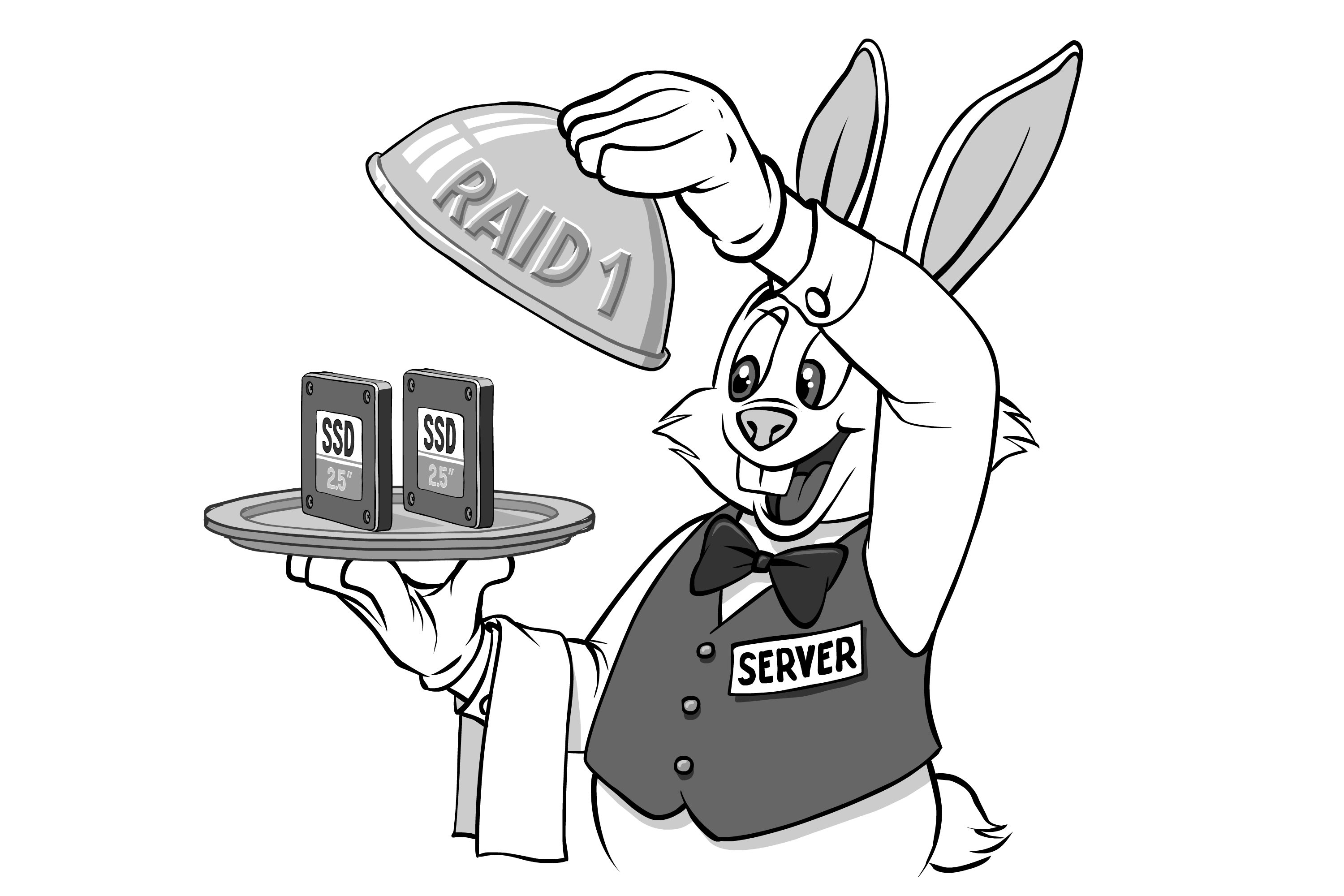 Databases and RAIDs - IT Hare on Soft ware