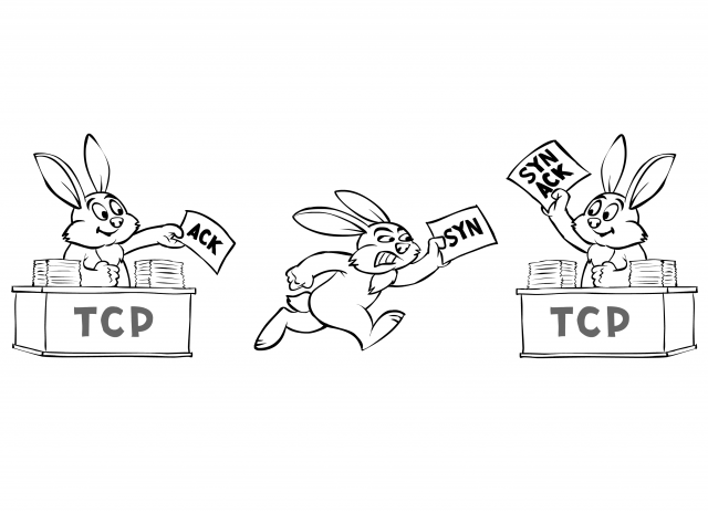 TCP handshake performed by rabbits: SYN - SYN+ACK - ACK