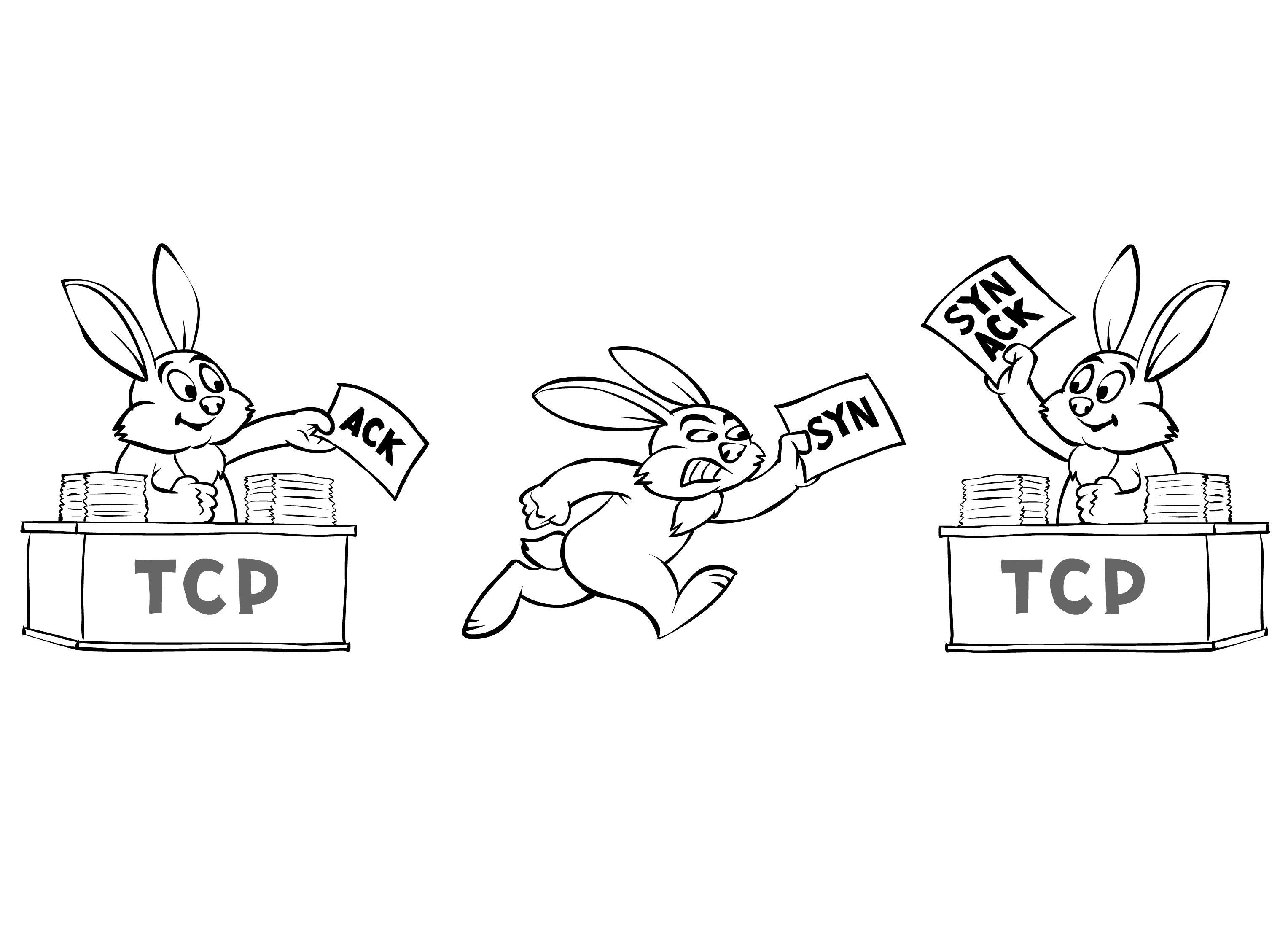 network programming difference between tcp and udp