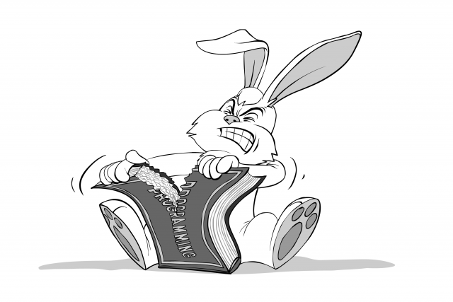 IT Hare Tearing a Programming Book